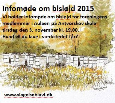 Infomøde bisløjd 2015.JPG