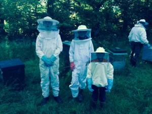 Honninghøst
